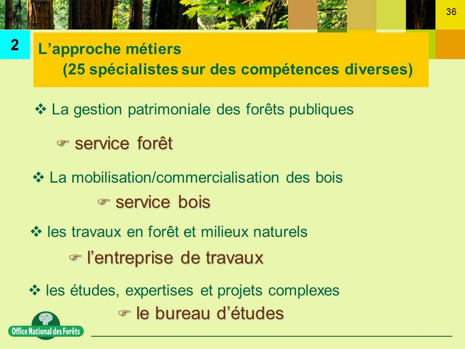 36 Lapproche métiers (25 spécialistes sur des compétences diverses) les travaux en forêt et milieux naturels lentreprise de travaux lentreprise de tra