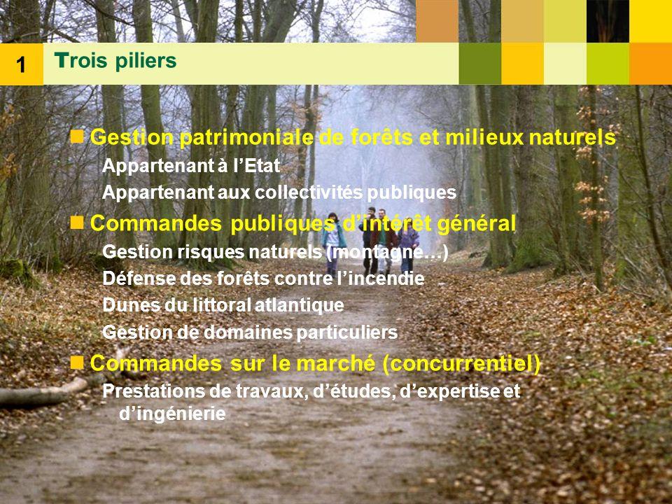 5 Gestion patrimoniale de forêts et milieux naturels Appartenant à lEtat Appartenant aux collectivités publiques Commandes publiques dintérêt général