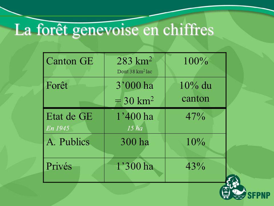 La forêt genevoise en chiffres Canton GE283 km 2 Dont 38 km 2 lac 100% Forêt3000 ha = 30 km 2 10% du canton Etat de GE En 1945 1400 ha 15 ha 47% A.