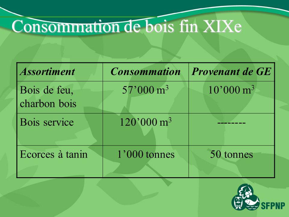 Consommation de bois fin XIXe AssortimentConsommationProvenant de GE Bois de feu, charbon bois 57000 m 3 10000 m 3 Bois service120000 m 3 -------- Ecorces à tanin1000 tonnes50 tonnes