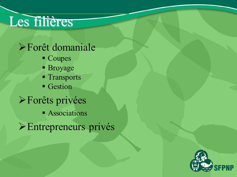 Les filières Forêt domaniale Coupes Broyage Transports Gestion Forêts privées Associations Entrepreneurs privés