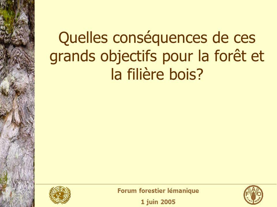 Forum forestier lémanique 1 juin 2005 Quelles conséquences de ces grands objectifs pour la forêt et la filière bois