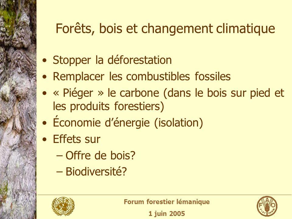 Forum forestier lémanique 1 juin 2005 Forêts, bois et changement climatique Stopper la déforestation Remplacer les combustibles fossiles « Piéger » le carbone (dans le bois sur pied et les produits forestiers) Économie dénergie (isolation) Effets sur –Offre de bois.