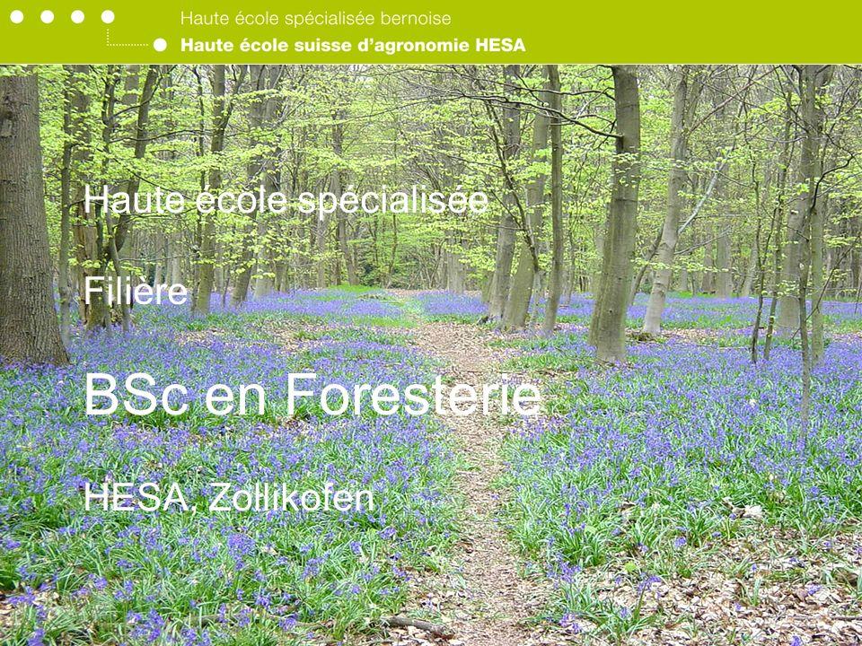 Haute école spécialisée Filière BSc en Foresterie HESA, Zollikofen