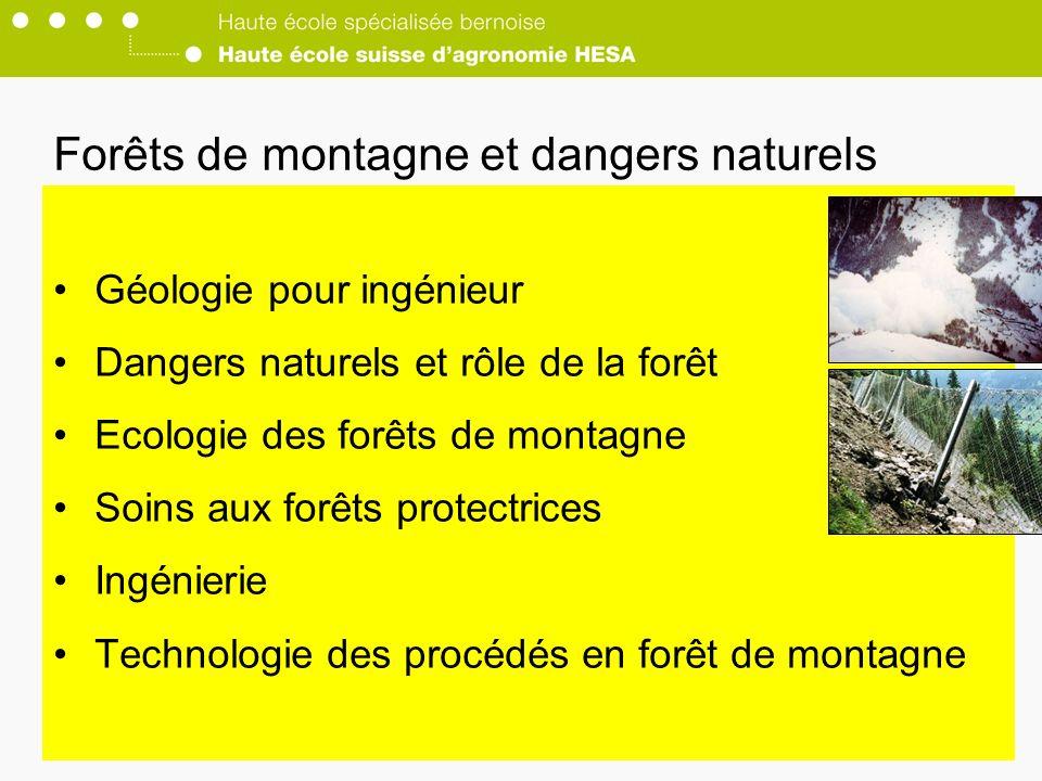 Forêts de montagne et dangers naturels Géologie pour ingénieur Dangers naturels et rôle de la forêt Ecologie des forêts de montagne Soins aux forêts protectrices Ingénierie Technologie des procédés en forêt de montagne
