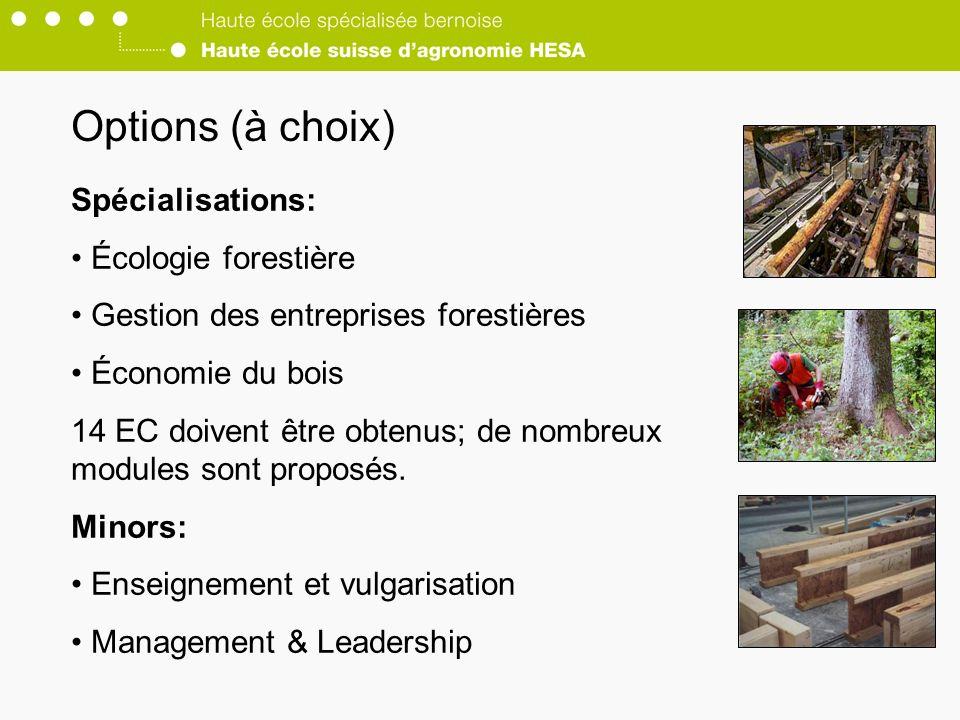 Options (à choix) Spécialisations: Écologie forestière Gestion des entreprises forestières Économie du bois 14 EC doivent être obtenus; de nombreux modules sont proposés.
