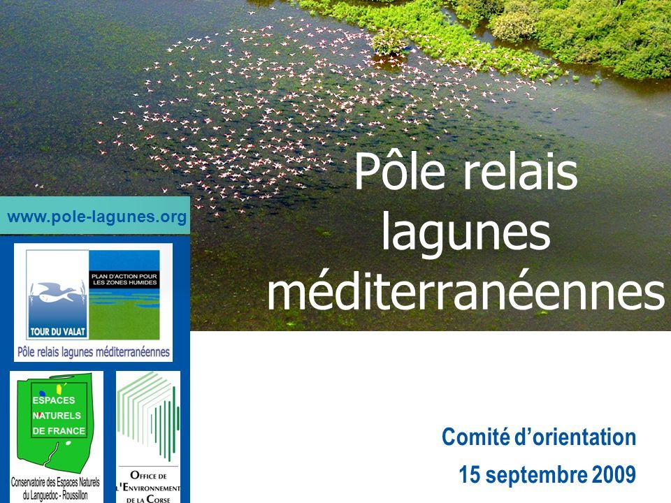 Comité dorientation 15 septembre 2009 Pôle relais lagunes méditerranéennes www.pole-lagunes.org
