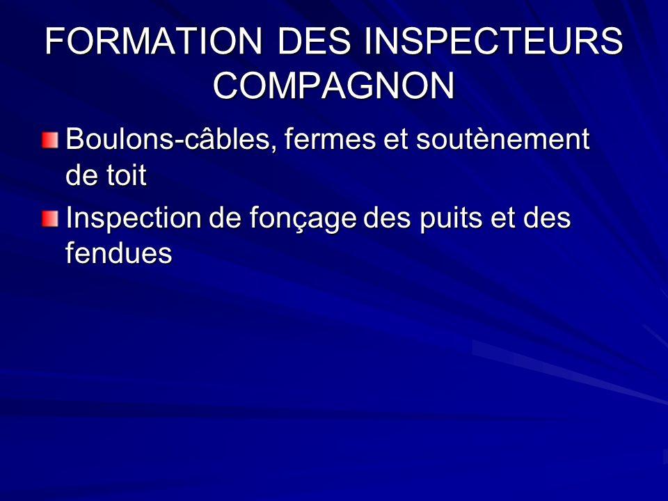 FORMATION DES INSPECTEURS COMPAGNON Boulons-câbles, fermes et soutènement de toit Inspection de fonçage des puits et des fendues