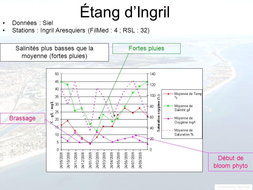 Étang dIngril Données : Siel Stations : Ingril Aresquiers (FilMed : 4 ; RSL : 32) Fortes pluies Brassage Début de bloom phyto Salinités plus basses qu