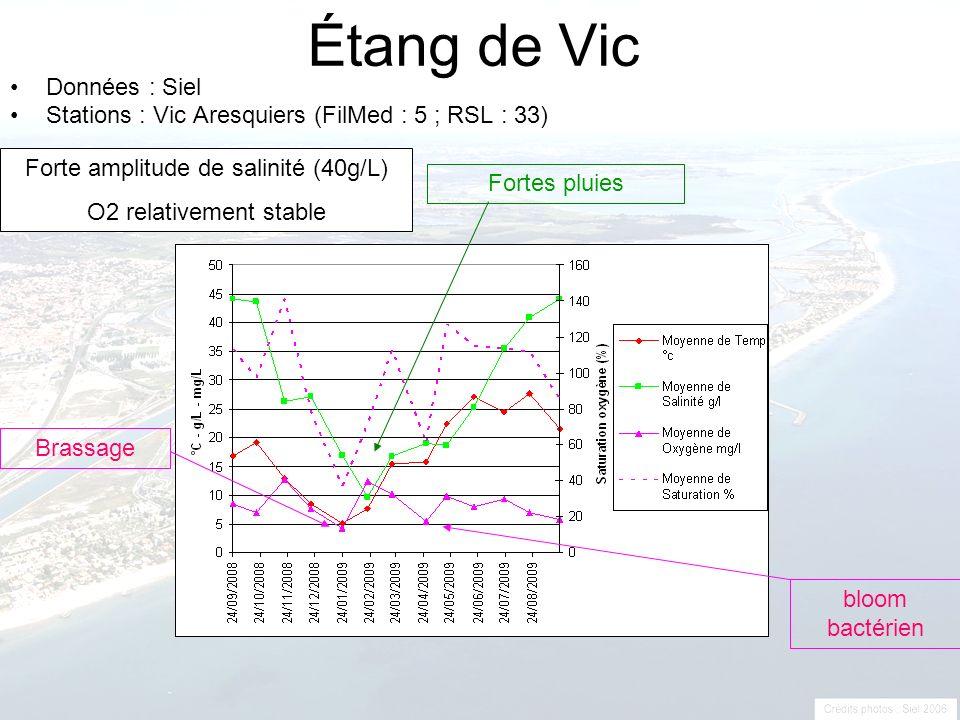 Étang de Vic Données : Siel Stations : Vic Aresquiers (FilMed : 5 ; RSL : 33) Fortes pluies Brassage bloom bactérien Forte amplitude de salinité (40g/