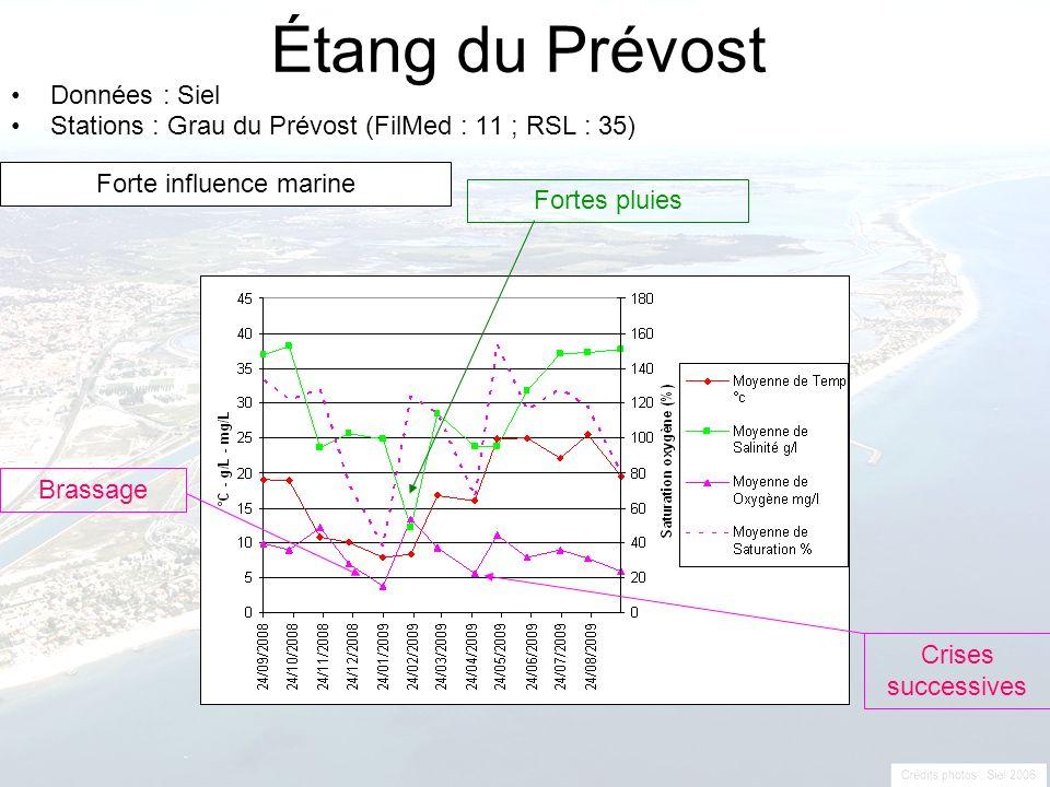 Étang du Prévost Données : Siel Stations : Grau du Prévost (FilMed : 11 ; RSL : 35) Fortes pluies Brassage Crises successives Forte influence marine