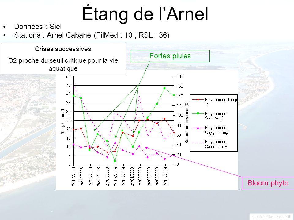Étang de lArnel Données : Siel Stations : Arnel Cabane (FilMed : 10 ; RSL : 36) Fortes pluies Bloom phyto Crises successives O2 proche du seuil critiq