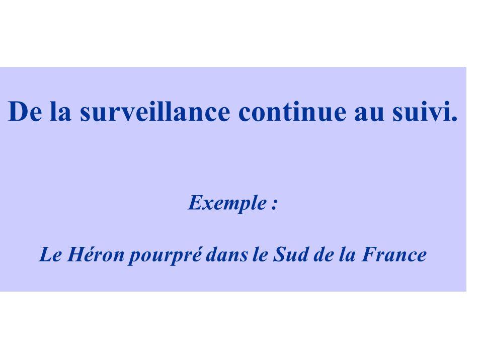 De la surveillance continue au suivi. Exemple : Le Héron pourpré dans le Sud de la France
