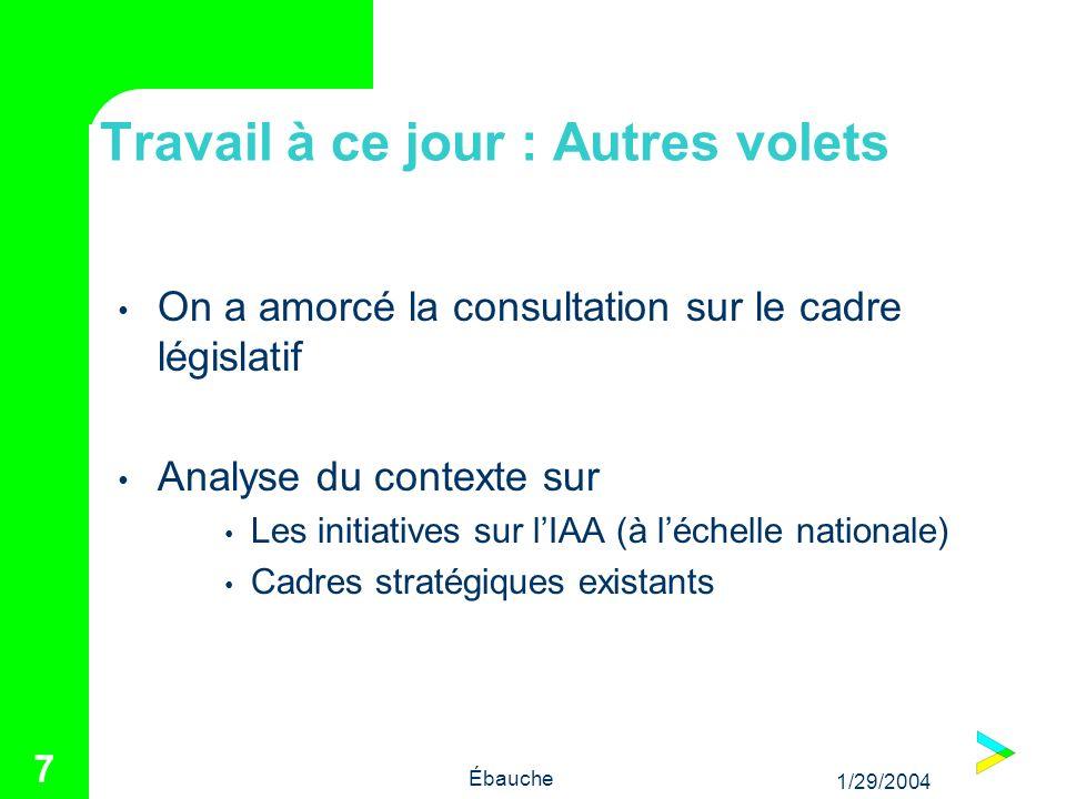 1/29/2004 Ébauche 7 Travail à ce jour : Autres volets On a amorcé la consultation sur le cadre législatif Analyse du contexte sur Les initiatives sur