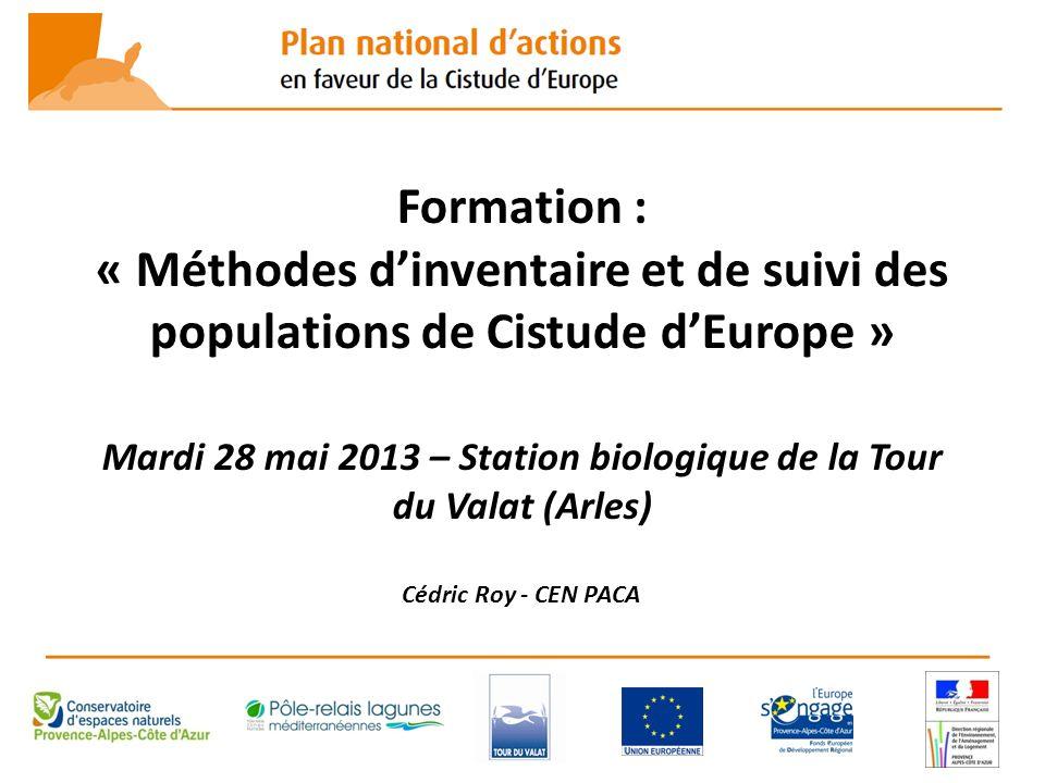 Formation : « Méthodes dinventaire et de suivi des populations de Cistude dEurope » Mardi 28 mai 2013 – Station biologique de la Tour du Valat (Arles)