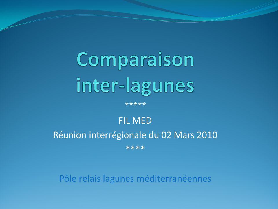 ***** FIL MED Réunion interrégionale du 02 Mars 2010 **** Pôle relais lagunes méditerranéennes