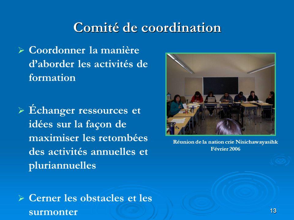 13 Comité de coordination Coordonner la manière daborder les activités de formation Échanger ressources et idées sur la façon de maximiser les retombé