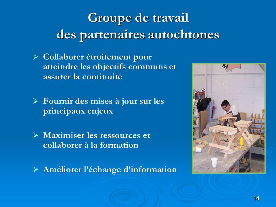 14 Groupe de travail des partenaires autochtones Collaborer étroitement pour atteindre les objectifs communs et assurer la continuité Fournir des mise
