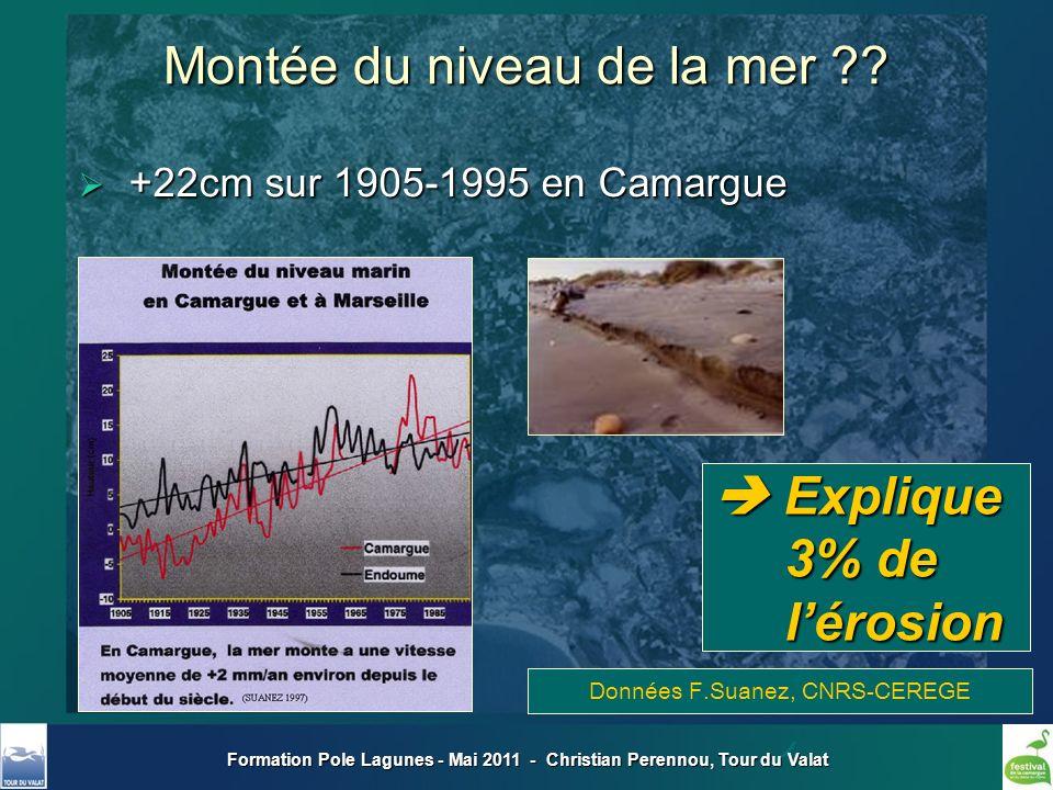 Formation Pole Lagunes - Mai 2011 - Christian Perennou, Tour du Valat +22cm sur 1905-1995 en Camargue +22cm sur 1905-1995 en Camargue Données F.Suanez