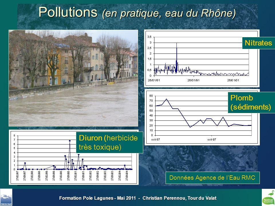 Formation Pole Lagunes - Mai 2011 - Christian Perennou, Tour du Valat Nitrates Plomb (sédiments) Pollutions (en pratique, eau du Rhône) Diuron (herbic