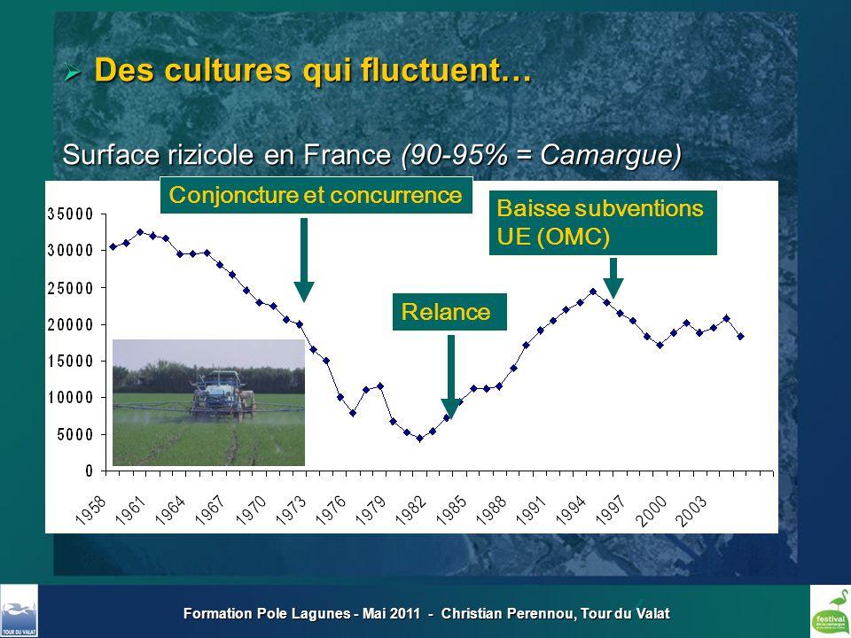 Formation Pole Lagunes - Mai 2011 - Christian Perennou, Tour du Valat Conjoncture et concurrence Relance Baisse subventions UE (OMC) Des cultures qui