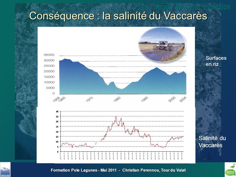 Formation Pole Lagunes - Mai 2011 - Christian Perennou, Tour du Valat Les raisons de cette évolution Surfaces en riz Salinité du Vaccarès Conséquence