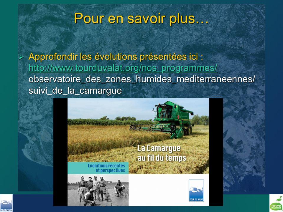 Formation Pole Lagunes - Mai 2011 - Christian Perennou, Tour du Valat Pour en savoir plus… Approfondir les évolutions présentées ici : http://www.tour