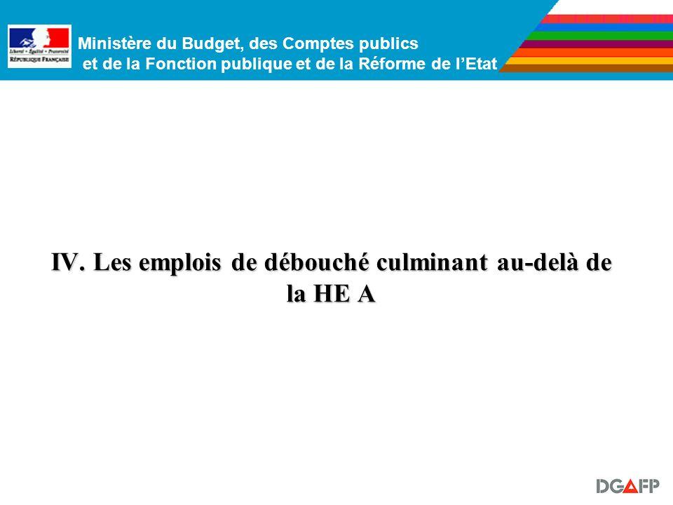 Ministère du Budget, des Comptes publics et de la Fonction publique et de la Réforme de lEtat La répartition des corps :