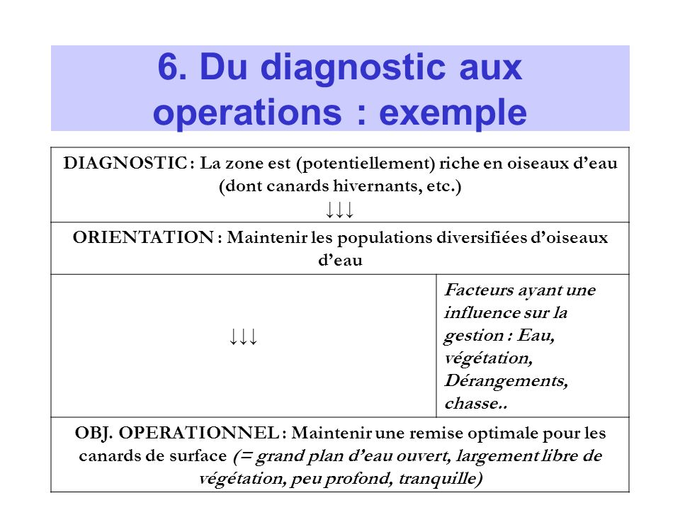 6. Du diagnostic aux operations : exemple DIAGNOSTIC : La zone est (potentiellement) riche en oiseaux deau (dont canards hivernants, etc.) ORIENTATION