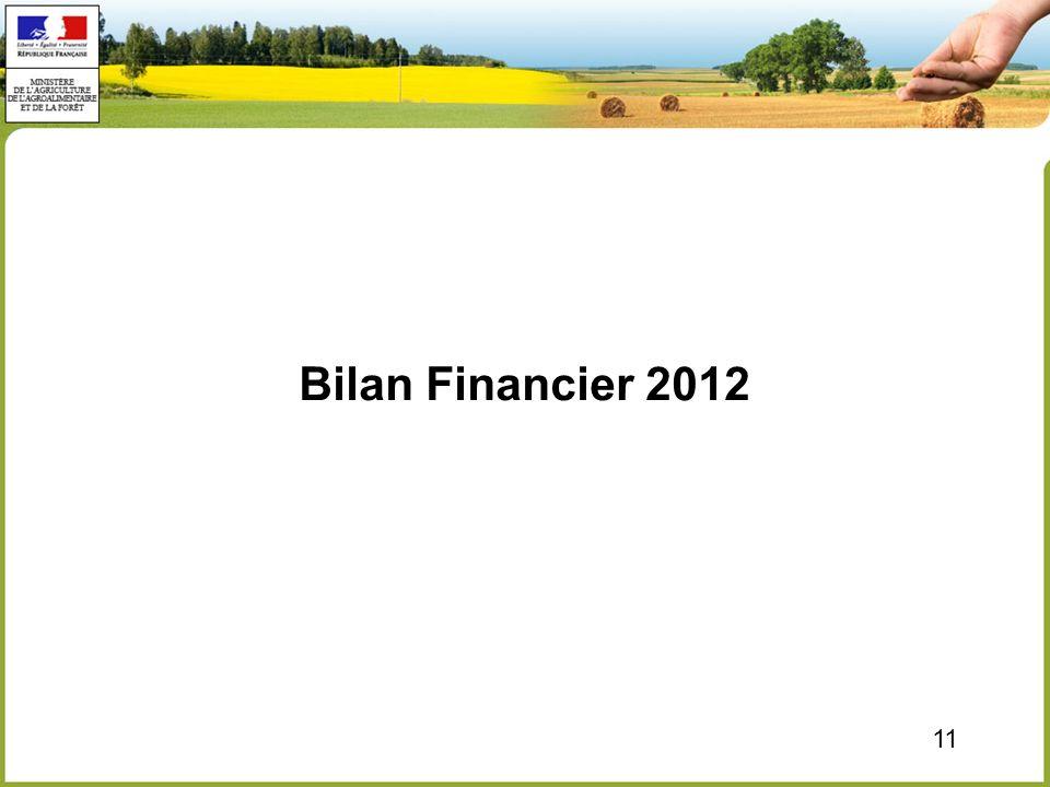 11 Bilan Financier 2012