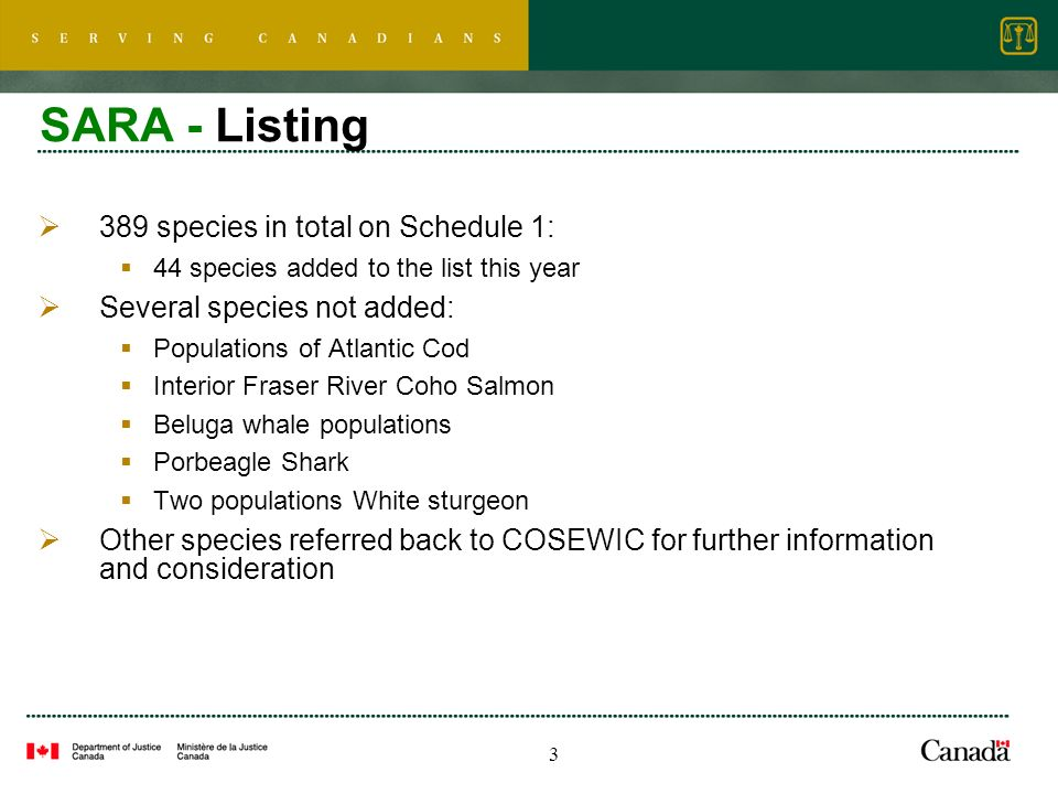 3 SARA - Listing 389 species in total on Schedule 1: 44 species added to the list this year Several species not added: Populations of Atlantic Cod Interior Fraser River Coho Salmon Beluga whale populations Porbeagle Shark Two populations White sturgeon Other species referred back to COSEWIC for further information and consideration