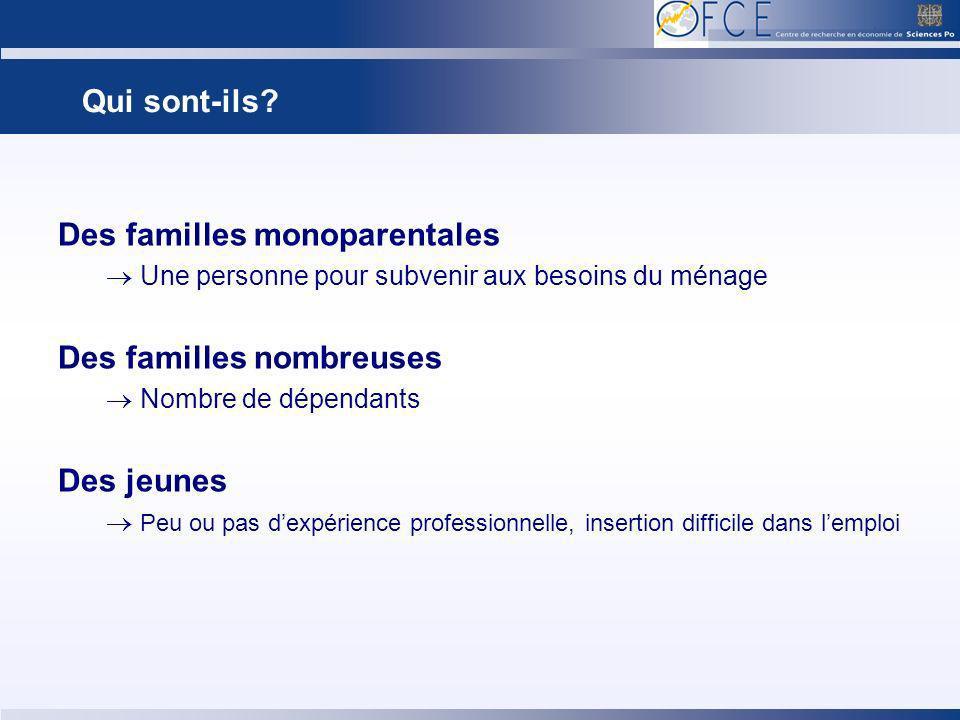 Qui sont-ils? Des familles monoparentales Une personne pour subvenir aux besoins du ménage Des familles nombreuses Nombre de dépendants Des jeunes Peu