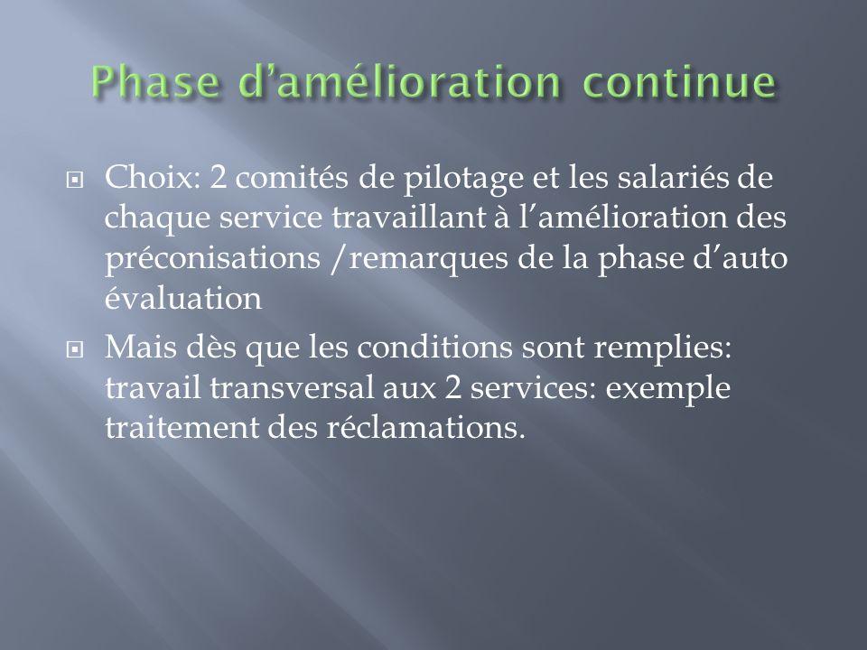 Choix: 2 comités de pilotage et les salariés de chaque service travaillant à lamélioration des préconisations /remarques de la phase dauto évaluation