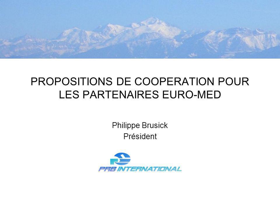 PROPOSITIONS DE COOPERATION POUR LES PARTENAIRES EURO-MED Philippe Brusick Président