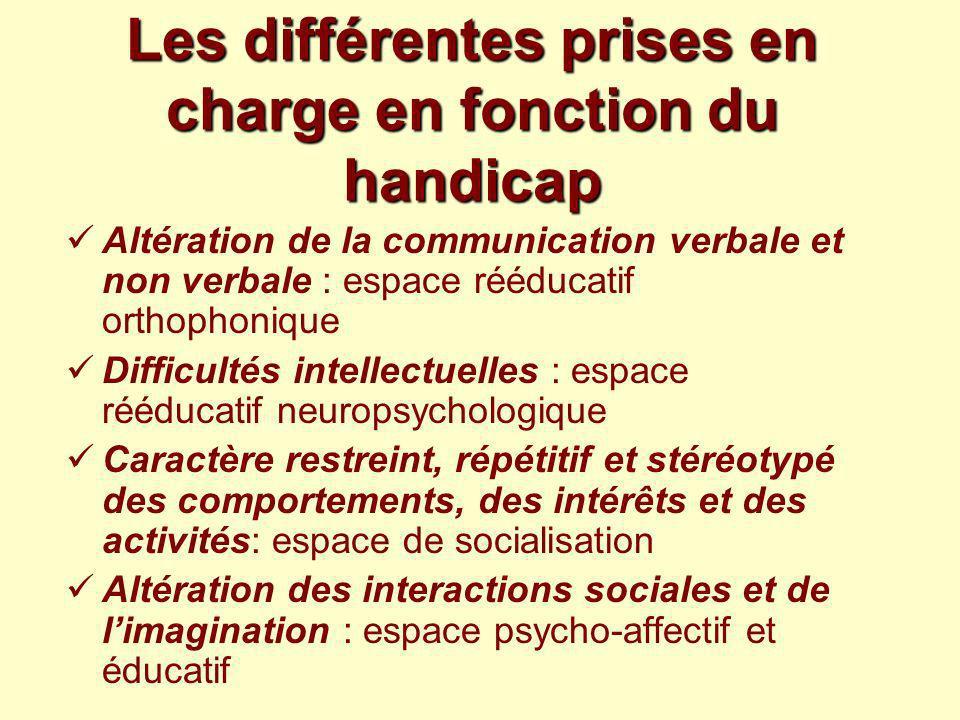 Les différentes prises en charge en fonction du handicap Altération de la communication verbale et non verbale : espace rééducatif orthophonique Diffi