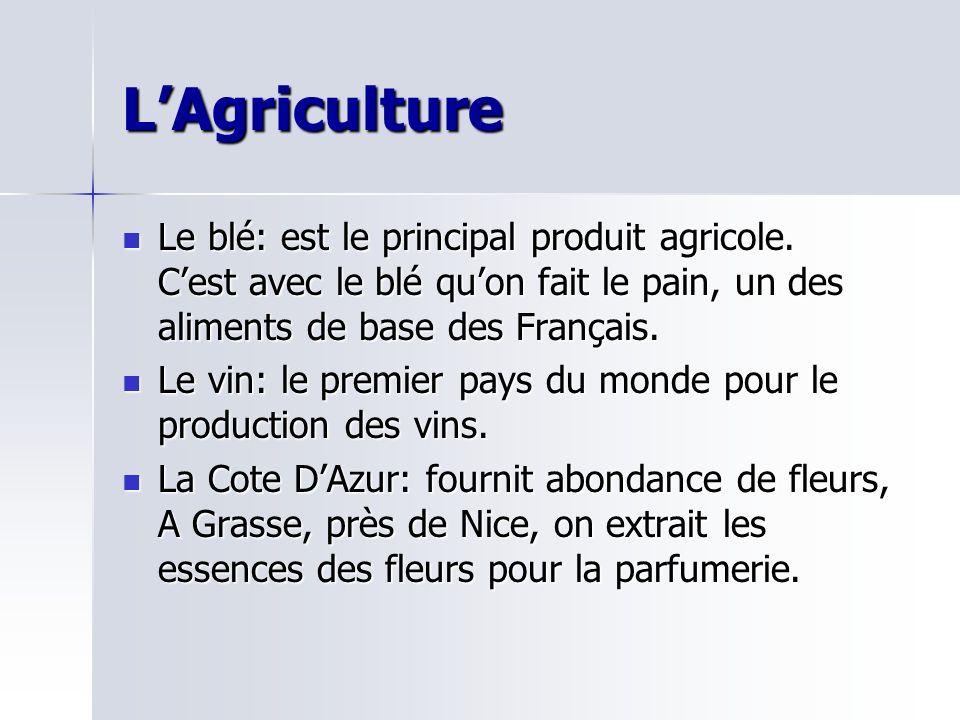 LAgriculture Le blé: est le principal produit agricole. Cest avec le blé quon fait le pain, un des aliments de base des Français. Le blé: est le princ