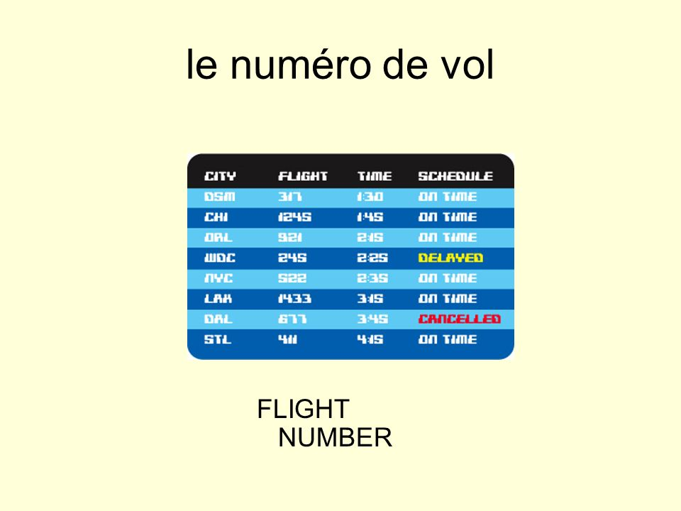 le numéro de vol FLIGHT NUMBER