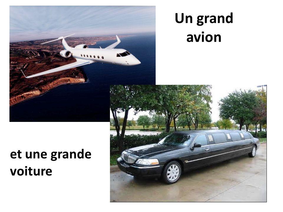 Un grand avion et une grande voiture