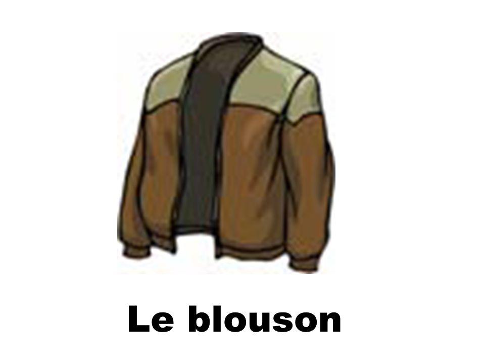 Les Couleurs vert(e)(s) noir(e)(s)gris(e)(s) jaune(s) rouge(s) rose(s)orangemarronviolet(te)(s) bleu blanc(he)(s)