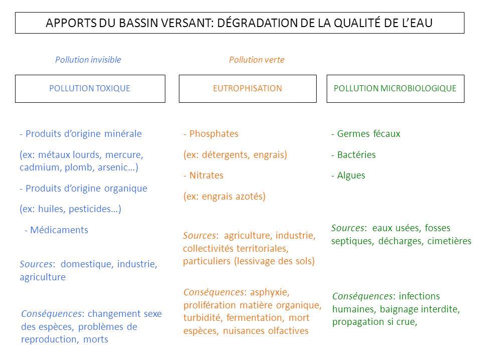 APPORTS DU BASSIN VERSANT: DÉGRADATION DE LA QUALITÉ DE LEAU POLLUTION TOXIQUEEUTROPHISATIONPOLLUTION MICROBIOLOGIQUE - Produits dorigine minérale (ex