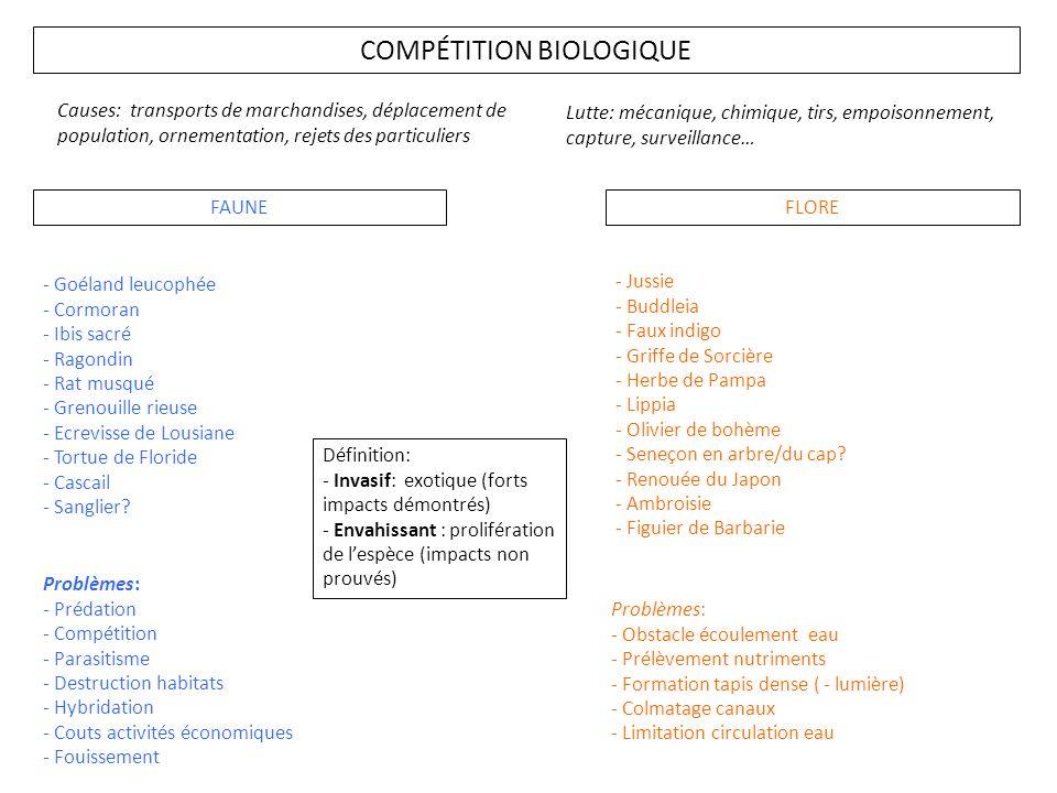 COMPÉTITION BIOLOGIQUE FAUNEFLORE - Goéland leucophée - Cormoran - Ibis sacré - Ragondin - Rat musqué - Grenouille rieuse - Ecrevisse de Lousiane - To