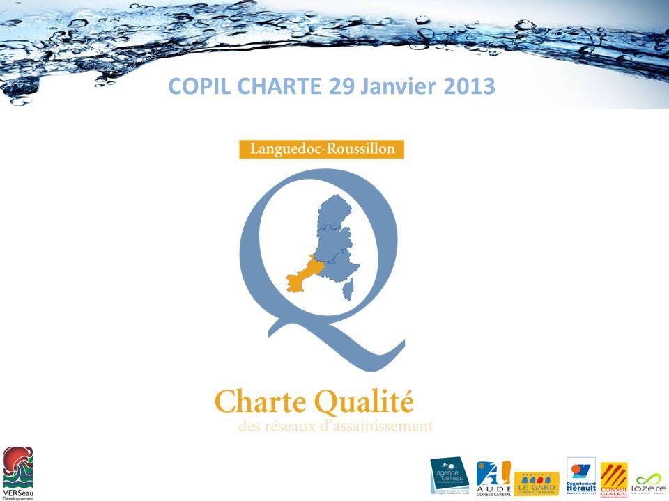COPIL CHARTE 29 Janvier 2013