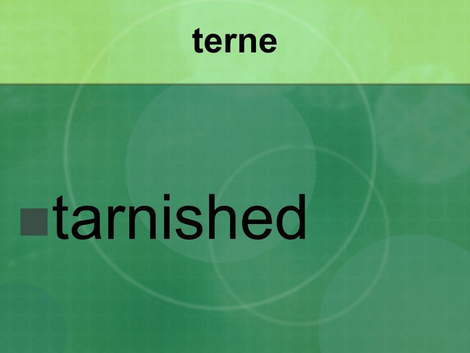 terne tarnished