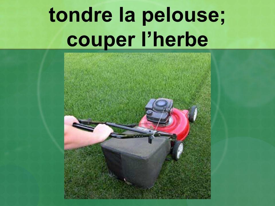 tondre la pelouse; couper lherbe