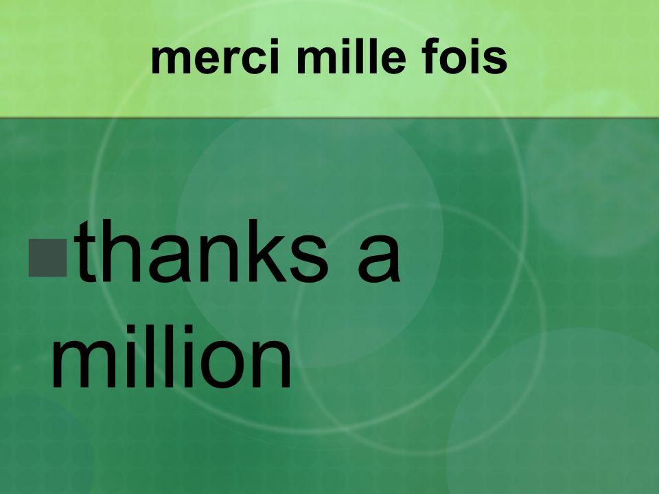 merci mille fois thanks a million