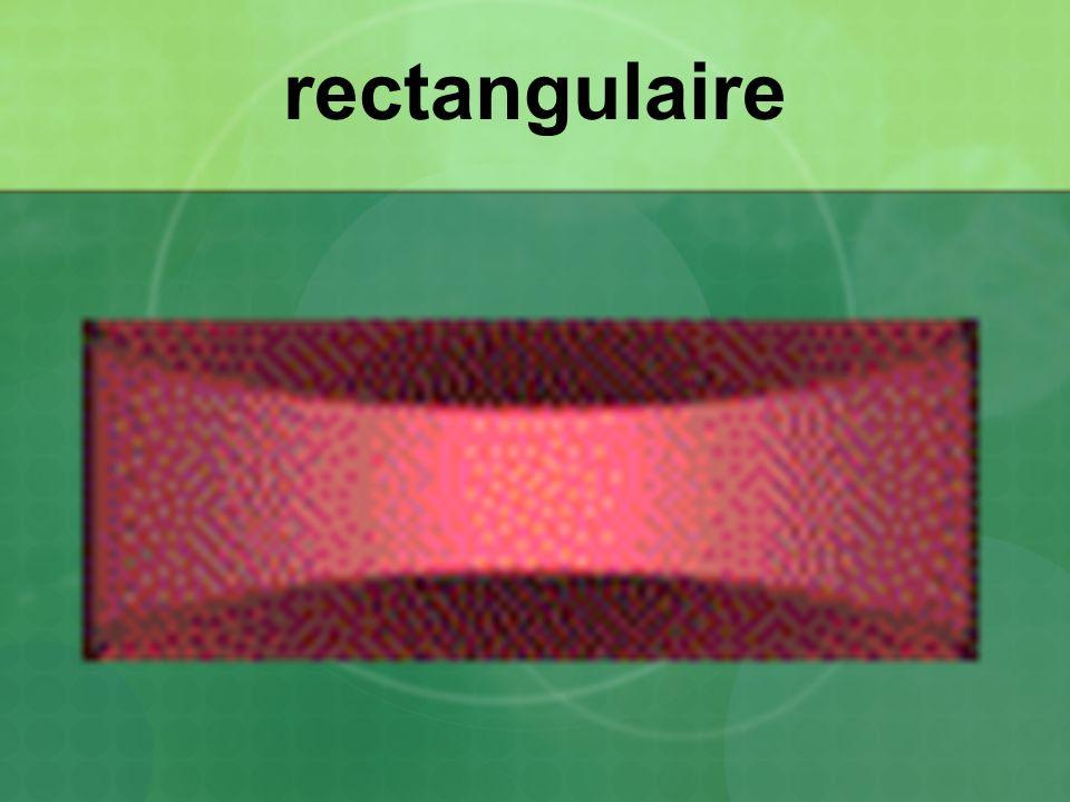 rectangulaire