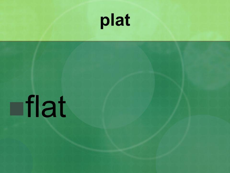 plat flat