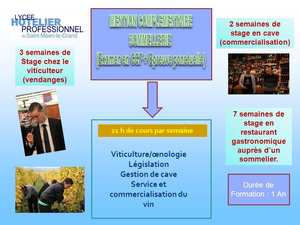 Viticulture/œnologie Législation Gestion de cave Service et commercialisation du vin 21 h de cours par semaine 3 semaines de Stage chez le viticulteur