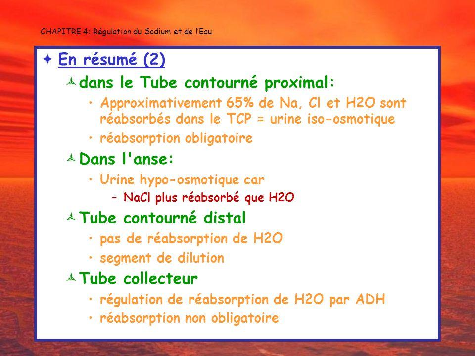 CHAPITRE 4: Régulation du Sodium et de lEau En résumé (2) dans le Tube contourné proximal: Approximativement 65% de Na, Cl et H2O sont réabsorbés dans