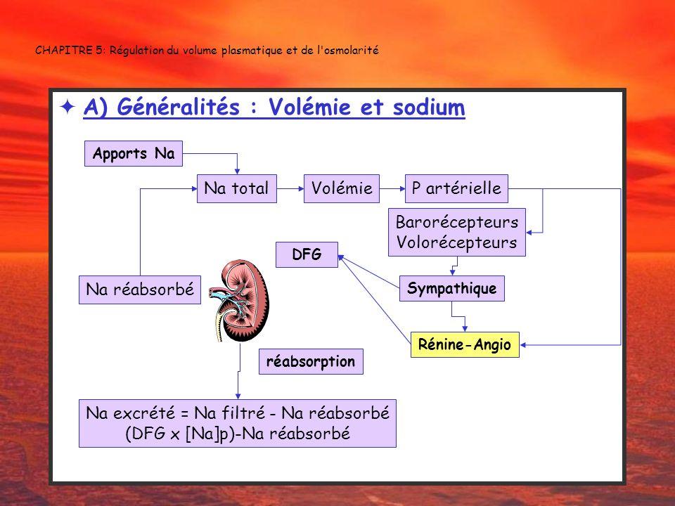 CHAPITRE 5: Régulation du volume plasmatique et de l'osmolarité A) Généralités : Volémie et sodium Na total Na excrété = Na filtré - Na réabsorbé (DFG